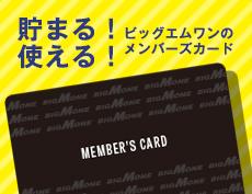 ビッグエムワンポイントカード